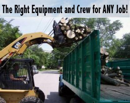 MRB Tree Service